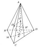 Bài 3 trang 18 SGK Hình học 12