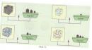 Hoạt động 3 trang 81 tài Tài liệu dạy - học Hóa học 8 tập