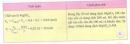 Hoạt động 4 trang 87 Tài liệu dạy - học Hóa học 8 tập 2