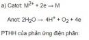 Bài 5 trang 98 sgk hoá học 12