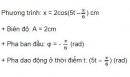 Bài 10 trang 9 SGK Vật lí 12