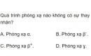 Bài 4 trang 194 SGK Vật lí 12