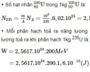 Bài 6 trang 198 SGK Vật lí 12