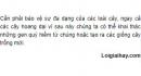 Bài 4 trang 132 SGK Sinh 12