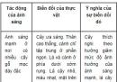 Bài 4 trang 155 SGK Sinh 12