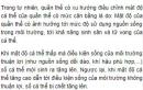 Bài 5 trang 174 SGK Sinh 12