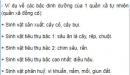 Bài 2 trang 194 SGK Sinh 12