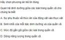 Bài 5 trang 203 SGK Sinh 12