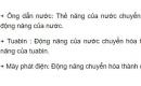 Bài C5 trang 161 sgk vật lí 9.