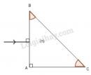 Bài 5 trang 179 sgk vật lý 11