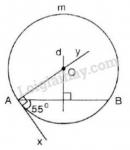 Bài 46 trang 86 sgk Toán lớp 9 tập 2
