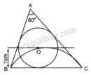 Bài 14 trang 135 SGK Toán 9 tập 2