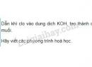 Bài 5 trang 81 SGK Hoá học 9