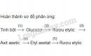 Bài 3 trang 168 SGK Hóa học 9