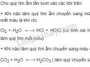 Bài 4 trang 167 SGK Hóa học 9