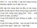 Câu hỏi lý thuyết 2 trang 6 SGK Sinh học 9