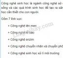 Câu hỏi lý thuyết 2 trang 94 SGK Sinh học 9