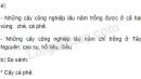 Bài 1 trang 112 SGK Địa lí 9