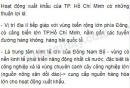 Hoạt động xuất khẩu của TP. Hồ Chí Minh có những thuận lợi gì?