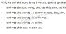 Bài 1 trang 153 SGK Sinh học 9