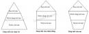 Bài 2 trang 142 SGK Sinh học 9