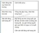 Bài 2 trang 185 SGK Sinh học 9