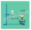 Bài 3 trang 49 sgk hóa học 11