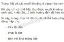 Bài 2 trang 24 SGK Sinh học 11