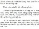 Bài 4 trang 39 SGK Sinh học 11