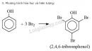 Báo cáo thực hành: Tính chất của etanol, glixerol và phenol