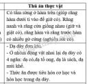 Bài 1 trang 70 SGK Sinh học 11