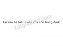 Câu 1 trang 80 SGK Sinh học 11