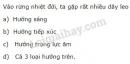 Bài 5 trang 101 SGK Sinh học 11
