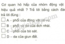 Câu 5 trang 76 SGK Sinh học 11