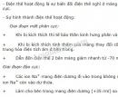 Bài 1 trang 120 SGK Sinh học 11