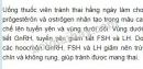 Bài 1,2,3 Sinh 11 trang 181 Bài Cơ chế điều hòa sinh sản