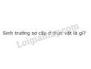 Bài 2 trang 138 SGK Sinh học 11