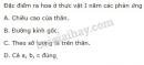 Bài 3 trang 146 SGK Sinh học 11