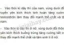 Bài 3 trang 154 SGK Sinh học 11