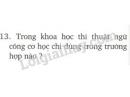 Bài 13 trang 62 SGK Vật lí 8