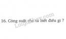 Bài 16 trang 63 SGK Vật lí 8