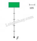 Bài C2 trang 16 SGK Vật lí 8