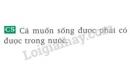 Bài C5 trang 70 SGK Vật lí 8