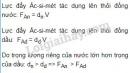 Bài C6 trang 38 SGK Vật lí 8