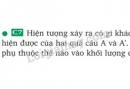 Bài C7 trang 57 sgk vật lí 8