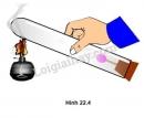 Bài C7 trang 78 sgk vật lí 8