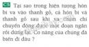 Bài C5 trang 96 SGK Vật lí 8