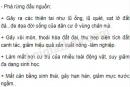 Bài 3 trang 76 SGK Địa lí 10