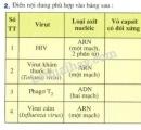 Bài 2 phần V trang 131 SGK Sinh học 10