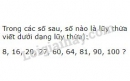 Bài 61 trang 28 SGK Toán 6 tập 1